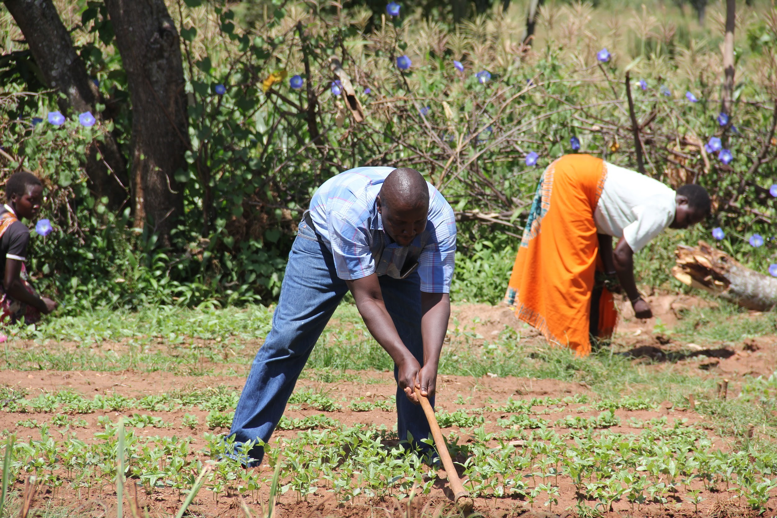 Pokot County Project Gets Tools